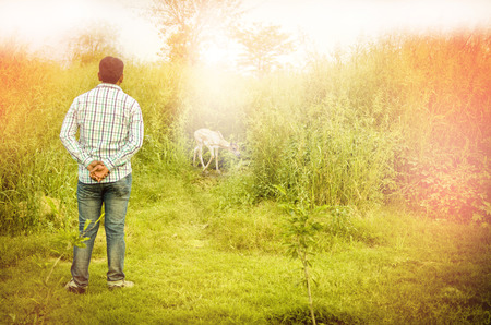 folded hands: man standing with folded hands on the back near the forest or bush or jungle entrance where bear is seen with magical lights depicting concept of god will show the path or god is with you or journey or concuring fear or going into uncertainity or in searc