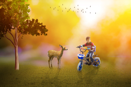 Life is good- indian asian boy child on bike with deer at magical park birds flying in the  sky