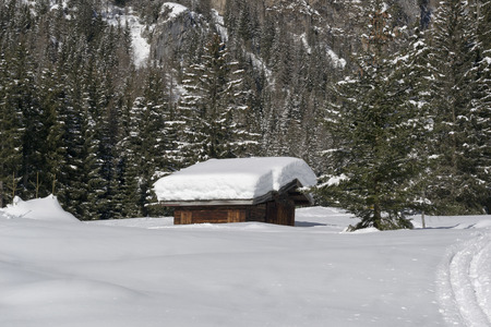 mountain hut: Mountain hut under snow in coniferous forest Stock Photo