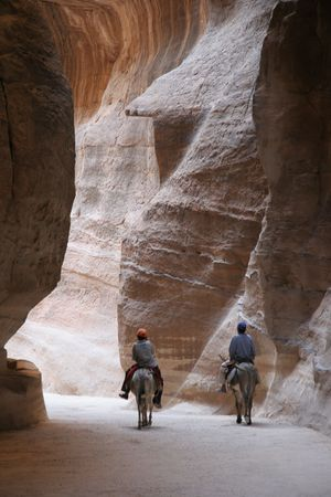of petra: Two Donkeys Stock Photo