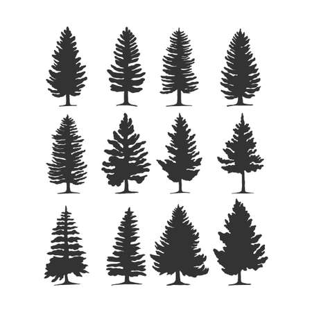 pine tree vector silhouette illustration. good for nature design or decoration template. simple grey color Vecteurs