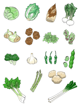 taro: Spring vegetables Illustration