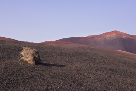 Landscape in Volcanic park Timanfaya on island Lanzarote, Canary Islands Stock Photo - 13282416