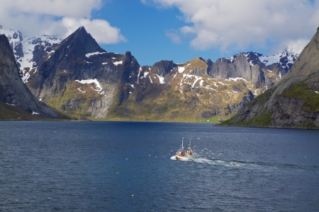 Fishing boat surrounded by seagulls making its way across Reinefjorden on Lofoten islands in Norway photo