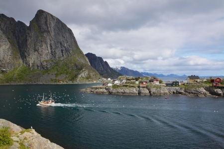 Traditional norwegian fishing boat surrounded by seagulls sailing through fjord photo