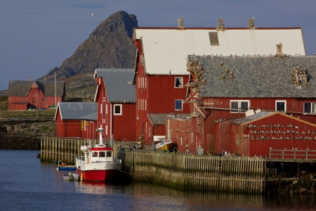Traditional fishing harbor with seagulls on islands of Rost on Lofoten islands in Norway photo