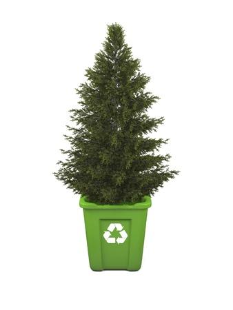 papelera de reciclaje: Reciclaje de concepto con el �rbol con�fero crece en verde papelera de reciclaje, aislado sobre fondo blanco