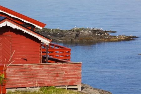 fishing hut: Picturesque red fishing hut on the coast of fjord on Lofoten islands in Norway Stock Photo