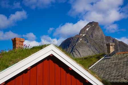 rorbu: Typical red rorbu hut with sod roof in town of Reine on Lofoten islands in Norway