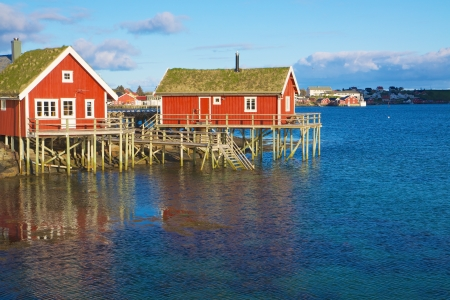 Typical red rorbu huts with sod roof in town of Reine on Lofoten islands in Norway photo