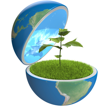 Small plant growing inside opened planet Earth, isolated on white background