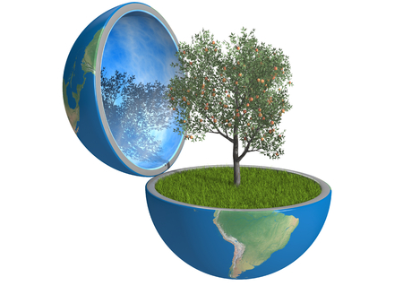 Fruit tree growing inside opened planet Earth, isolated on white background, concept of ecology or bio agriculture. Elements of this image furnished by NASA