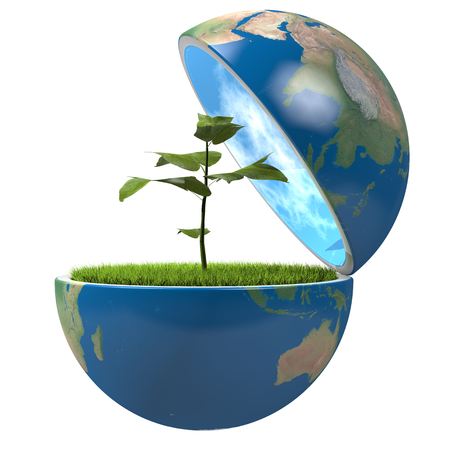 Small plant growing inside opened planet Earth, isolated on white background, concept of ecology, symbol of new life.  photo