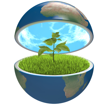 Small plant growing inside opened planet Earth, isolated on white background, concept of ecology, symbol of new life. Stock Photo - 25664760