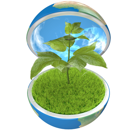 Small plant growing inside opened planet Earth, isolated on white background, concept of ecology, symbol of new life. Elements of this image furnished by NASA