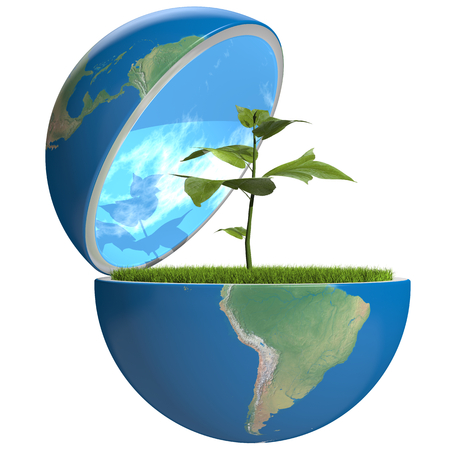 Small plant growing inside opened planet Earth, isolated on white, concept of ecology, symbol of new life. photo