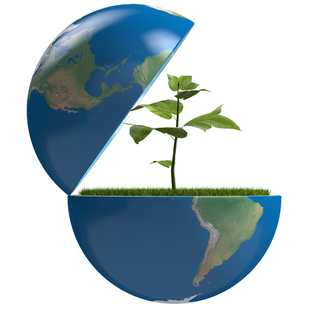 Small plant growing inside opened planet Earth, isolated on white background, concept of ecology, symbol of new life. Elements of this image furnished by NASA photo