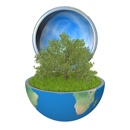 Oak tree growing inside opened planet Earth, isolated on white background, concept of ecology. Elements of this image furnished by NASA