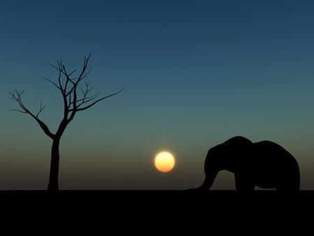 An image of an elephant silhouette with a African sky background. Stock Photo - 1150601