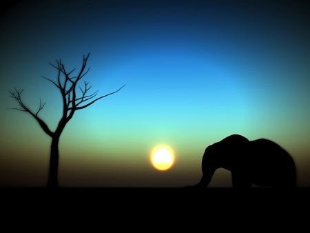 might: An image of an elephant silhouette with a African sky background.