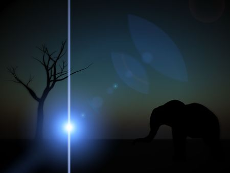 An image of an elephant silhouette with a African sky background. Stock Photo - 1171415