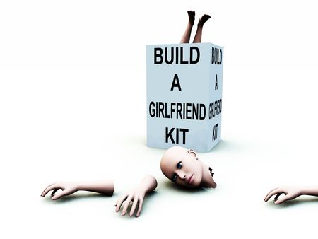 A abstract conceptual image of a kit to build a girlfriend.   Stock Photo - 1193873