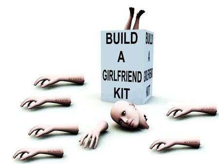 A abstract conceptual image of a kit to build a girlfriend. Stock Photo - 1193875