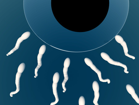 An image of some sperm about to fertilize an egg. photo