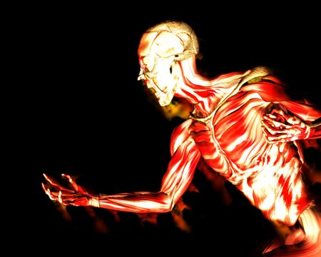 적합: An image of a man without any skin, with his muscles exposed a suitable image for .