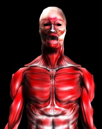 would: Un corpo di sesso maschile che � costituito di soli muscoli, che sarebbe un buon medico o Halloween immagine.  Archivio Fotografico