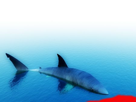 predictor: An image of a shark that has killed its prey.