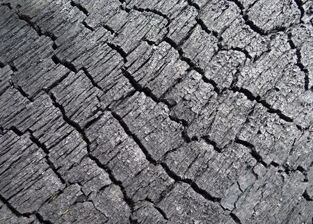 brunt: A close up photograph of some brunt tree bark. Stock Photo