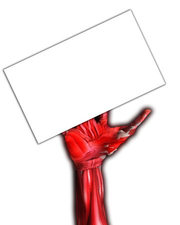 customisable: A muscle and bone arm for medical or Halloween concepts. Holding a blank customisable sign.