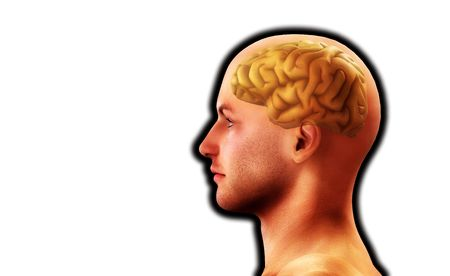 Image of a mans head, for thought and medical concepts. Stock Photo - 3967588