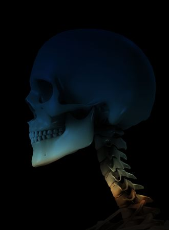 ghostlike: Skull for medical or Halloween concepts.