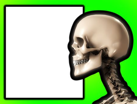 Skull with a blank customisable sign. Stock Photo