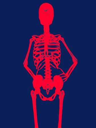 Skeleton With Heart  photo