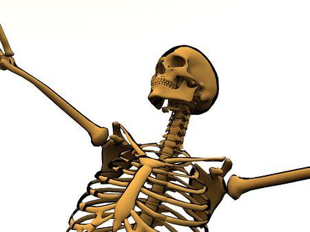 usage: Image of a cartoon skeleton for medical or Halloween usage.