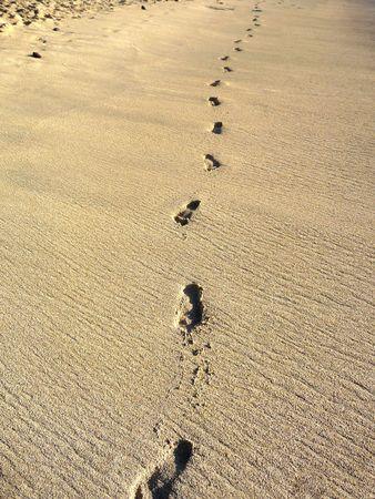 Human footprints in some nice warm beach sand.   photo