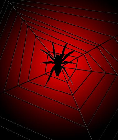 webbed legs: Illustrated 2D spider on a spider web.