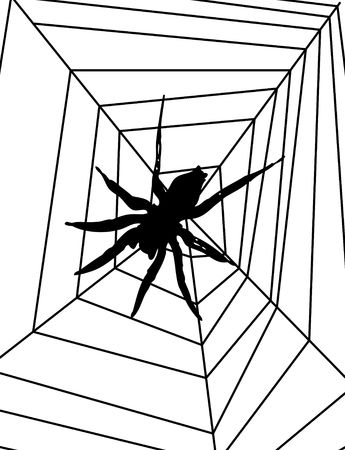 arachnophobia: Illustrated 2D spider on a spider web.