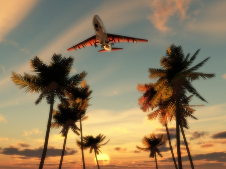 aeronautical: Plane flying over some palm trees with a sunset sky.