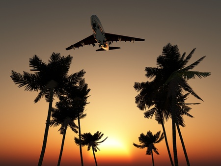 Plane flying over some palm trees with a sunset sky.