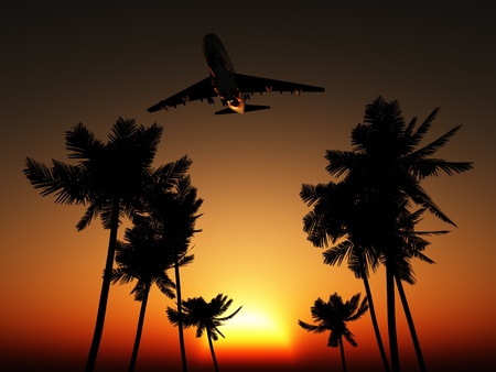 Plane flying over some palm trees with a sunset sky. photo