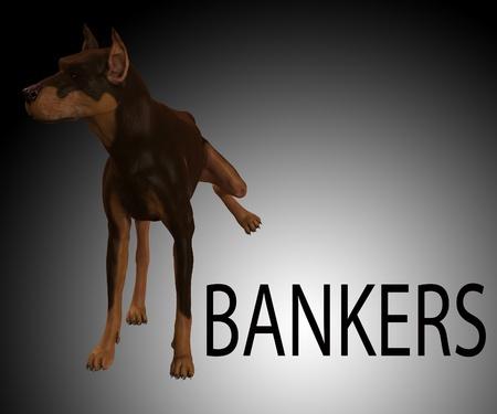 desprecio: Perro que est� mostrando su desprecio absoluto por los banqueros Foto de archivo