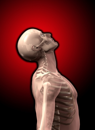 Transparent man with visible skeleton underneath the skin Stock Photo - 16452621