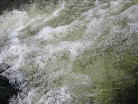 frothy: Primo piano di un p� d'acqua schiumosa in un fiume.