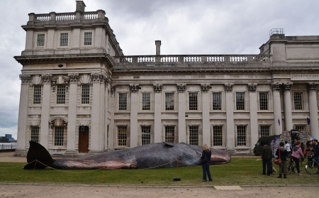 greenwich: London, June 23: The Great Greenwich Whale at the Greenwich and Docklands International Festival in Greenwich University, London June 23rd, 2013 in London England. Editorial
