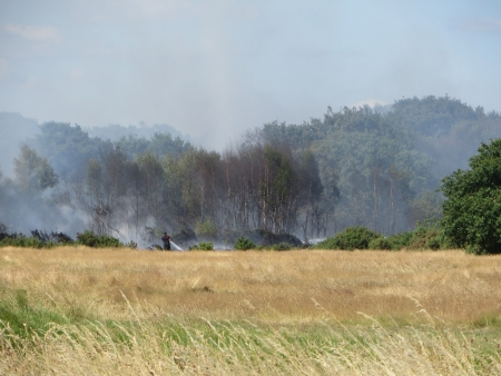Emergency services try to control the fire in Epping Forest. photo