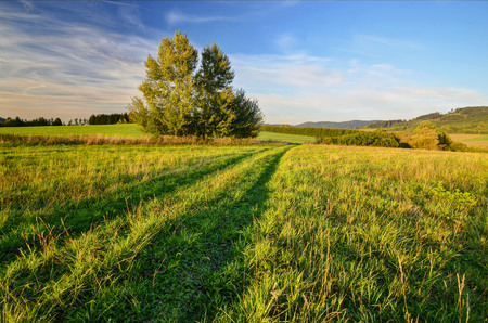 of irradiated: pastures irradiated the last rays of the sun Stock Photo
